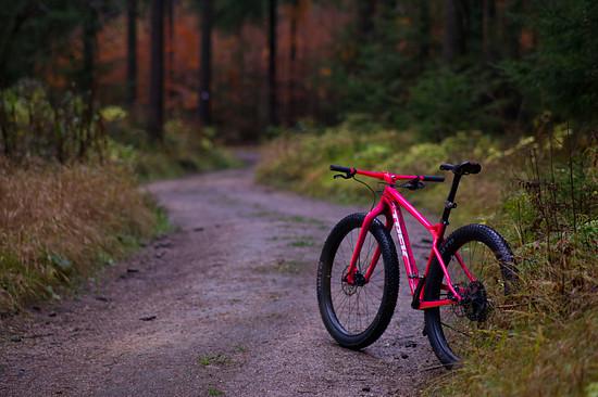 Trek Stache autumn