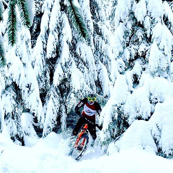 Snowride 2021
