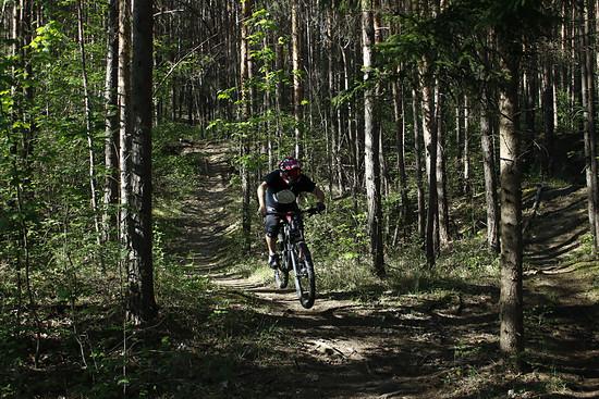 Alte Burg Trails Arnstadt