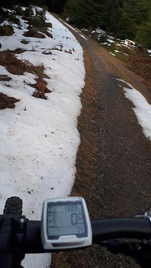 Schneeig