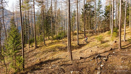 Chiemgau Trails