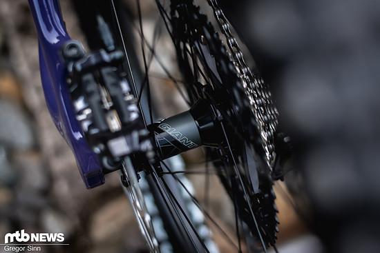 Auch die Carbon-Laufräder stammen von den Taiwanesen