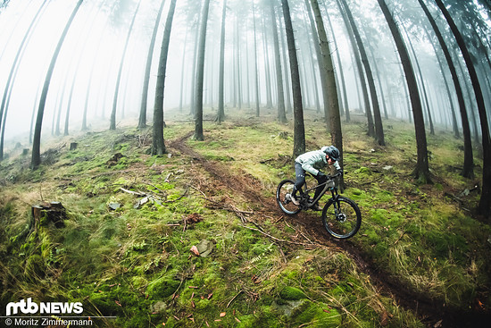 Trail Bikes sind prädestiniert für traumhafte Singletrails im Wald oder in den Alpen