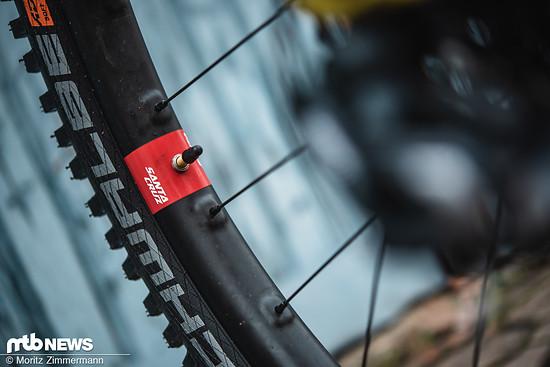 Die Santa Cruz-hauseigenen Reserve-Laufräder zählen zu den beliebtesten Carbon-Laufrädern