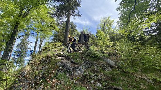 Bromantische Trail-Trans-Nationalpark