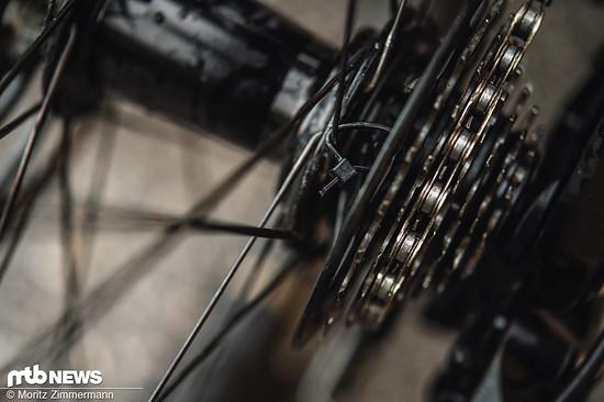 Um den Freilauf im Hinterrad lahmzulegen, wurde die Kassette einfach mit Kabelbindern an die Speichen gebunden.