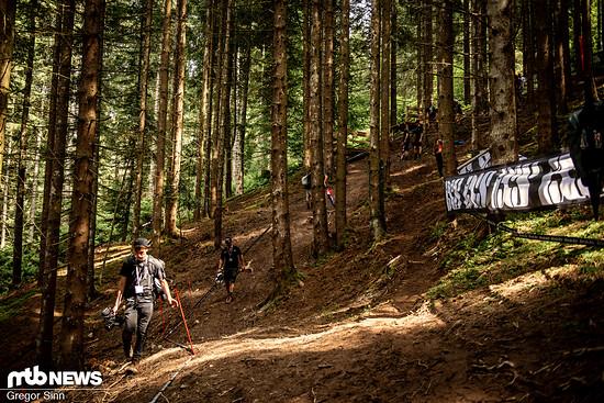 Die Streckenführung im unteren Wald ist größtenteils unverändert. Einzige Ausnahme: Hier kann man nun in Fahrtrichtung gesehen auch die obere Linie fahren