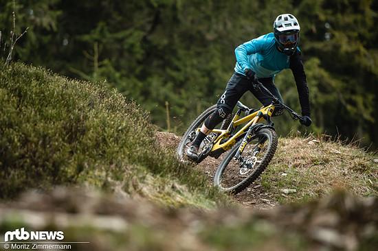 Sanfte Trails ohne große Hindernisse?
