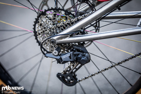 insanity of gravity titan Bike (6 von 11)