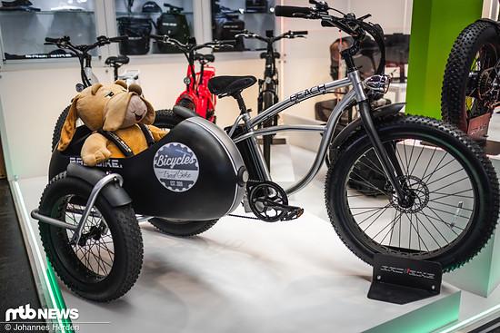 Dank E-Power lässt es sich auch mit Seitenwagen entspannt pedalieren