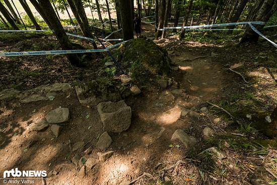 Die mittlere Sektion führt unverändert in einigen Kurven durch den Wald
