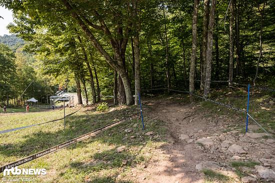 Statt Pseudo-Slopestyle-Features macht eine der beiden Strecken kurz vorm Ziel noch mal einen kleinen Abstecher in den Wald.